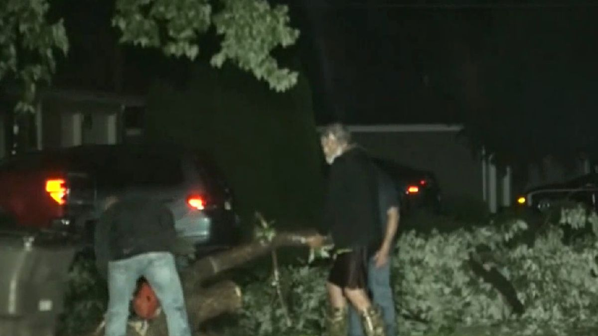 Men are cutting up a large tree limb that fell Wednesday night in Grand Island.  This is on Nevada just to the west of Independence.