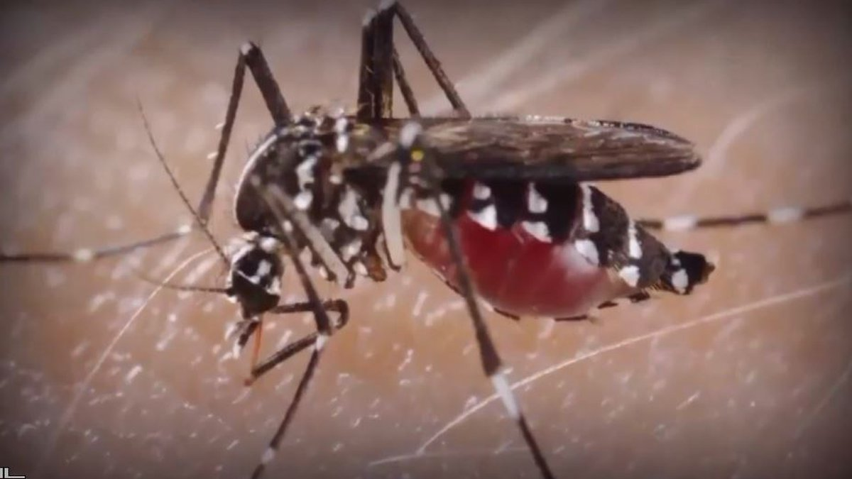 South Heartland District Health Department reports mosquitoes trapped in Adams County have...