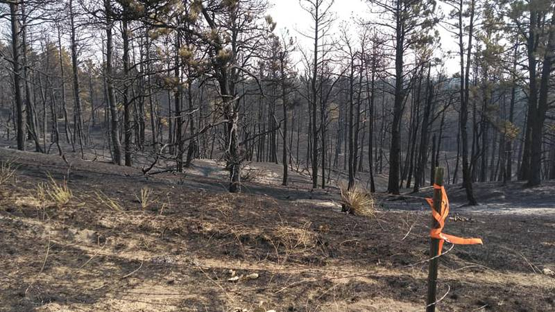 The Hackberry fire in the Nebraska Panhandle has burned nearly 6,000 acres.