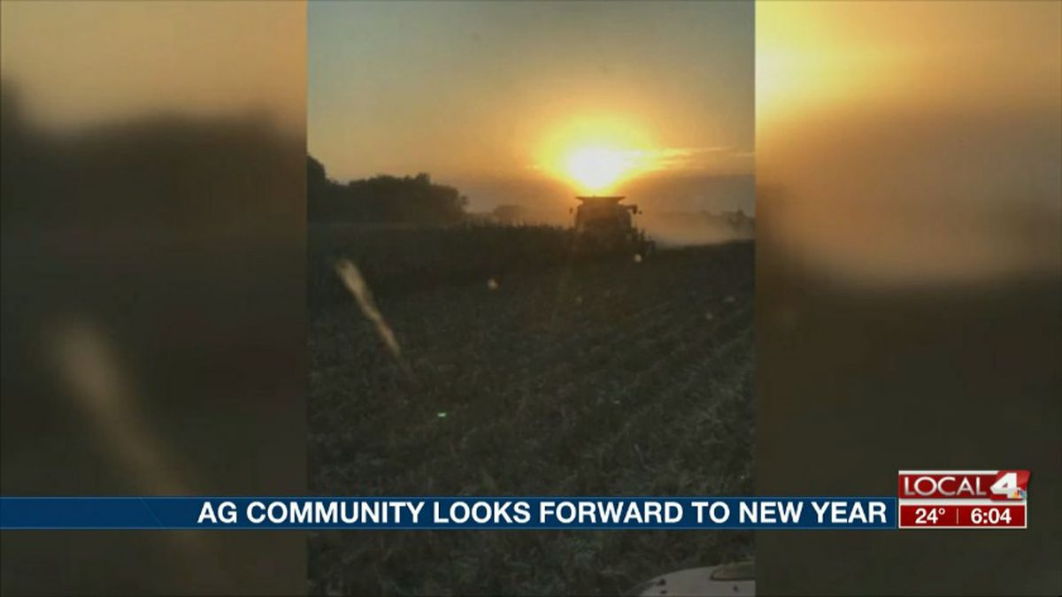 Mark McHargue farms a popcorn field in Central City. He said they dealt with rising ground water after heavy rains this year, and is looking forward to put this year behind him. (Source: Mark McHargue)