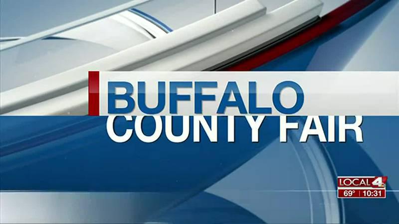 Ravenna plant shop places second at Buffalo County Fair