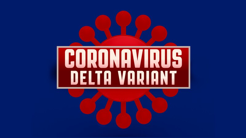 Delta COVID variant