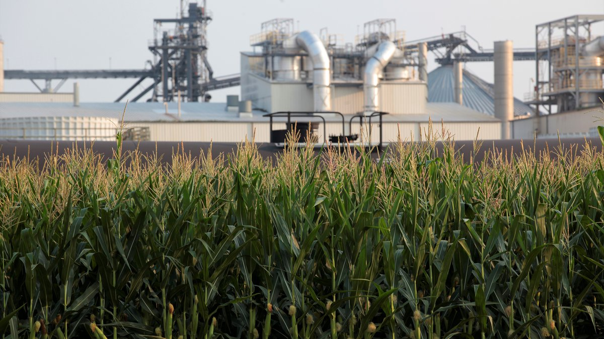 Project developers plan to build carbon capture pipelines connecting dozens of Midwestern...