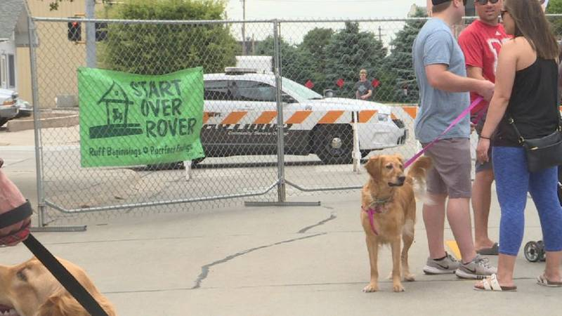 Start Over Rover holds first annual Woofstock event