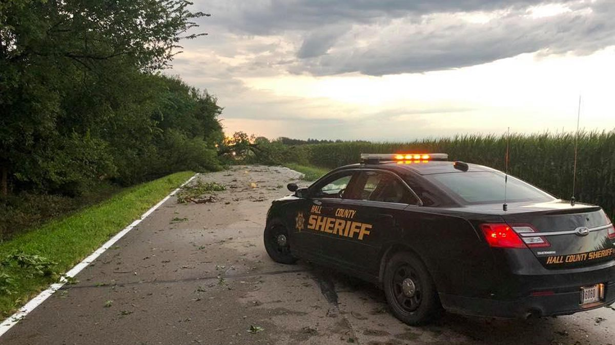 A tree lays across a road in Hall County following a storm early Wednesday. (Source: Hall County Sheriff's Department)