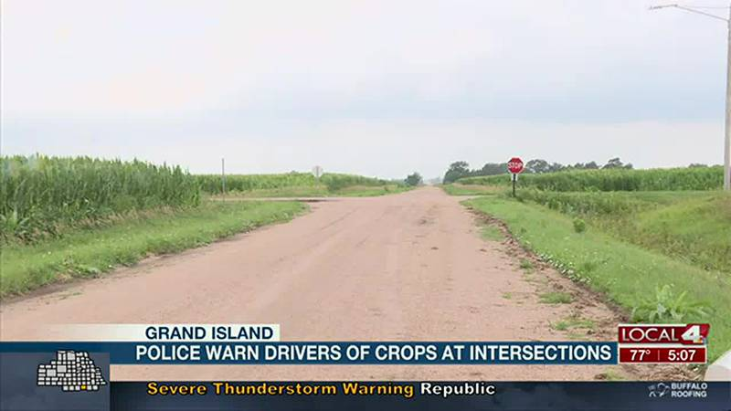 Police warn drivers of crops at intersections