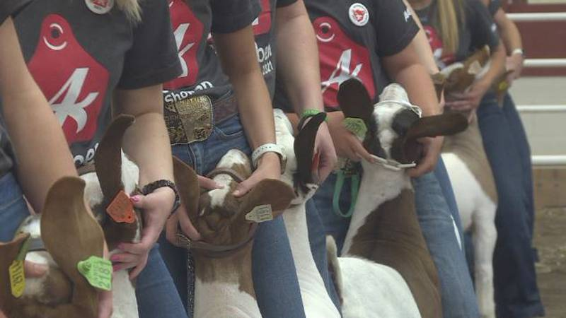 Fonner Park's 94th annual Aksarben Stock Show hosted first Grand Drive.