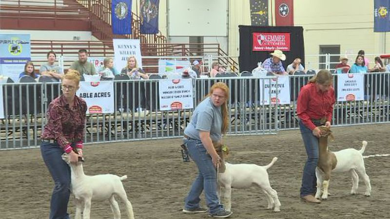 The American Boer Goat Association's hosting its annual National Show at Fonner Park this week.