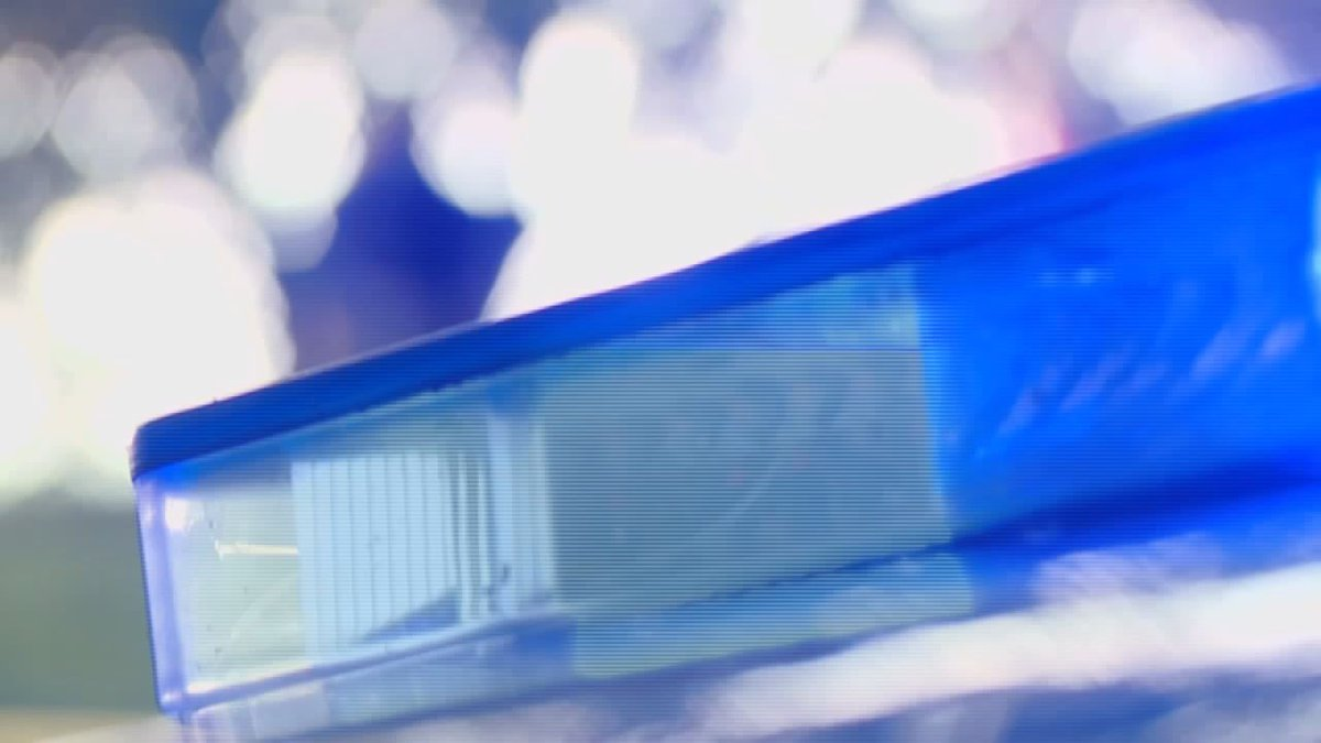 Grand Island police Tuesday had to put down one of two vicious dogs.