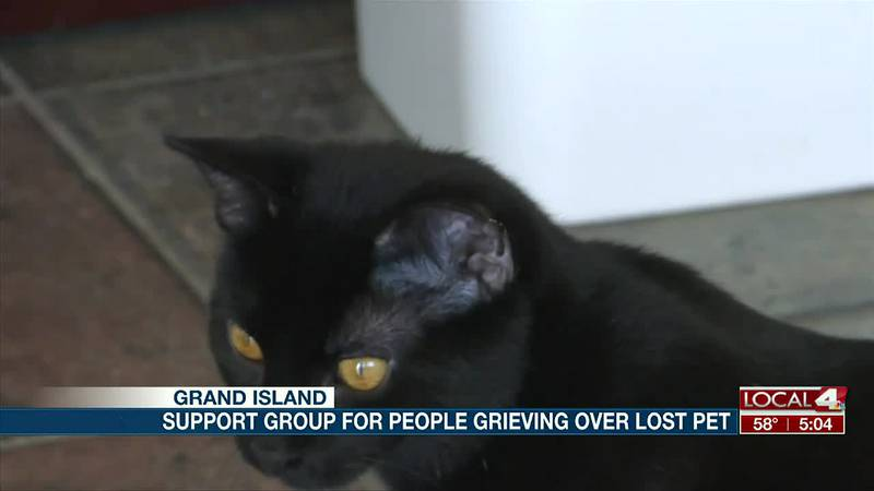 Support group for people who lost a pet