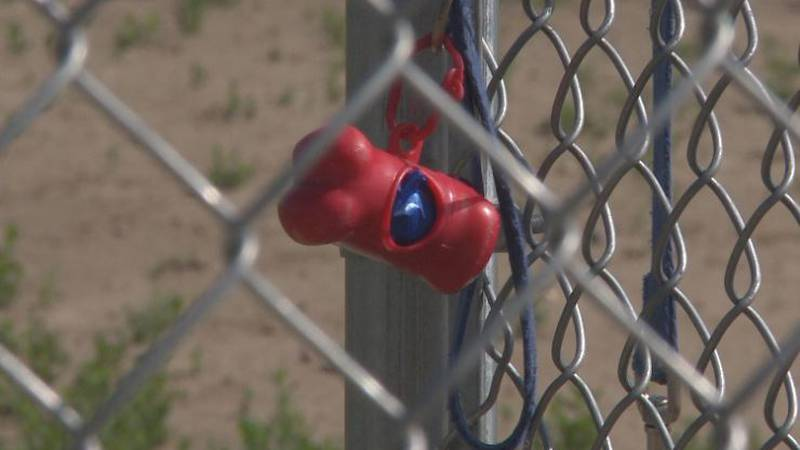 The City of Kearney is working on bringing another dog park to the city's north side.