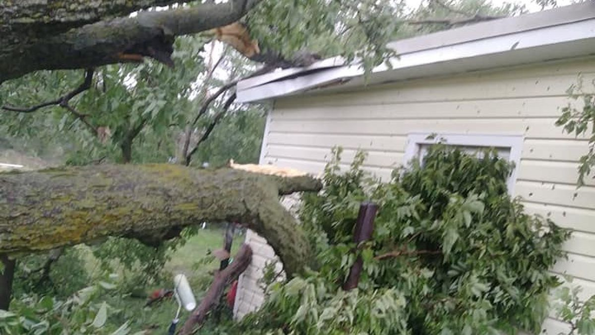 Storm damage in Palisade Thursday evening. 70 mph winds, 2-inch hail and heavy causing damage across the area. (SOURCE: Melanie Standiford, KNOP-TV)